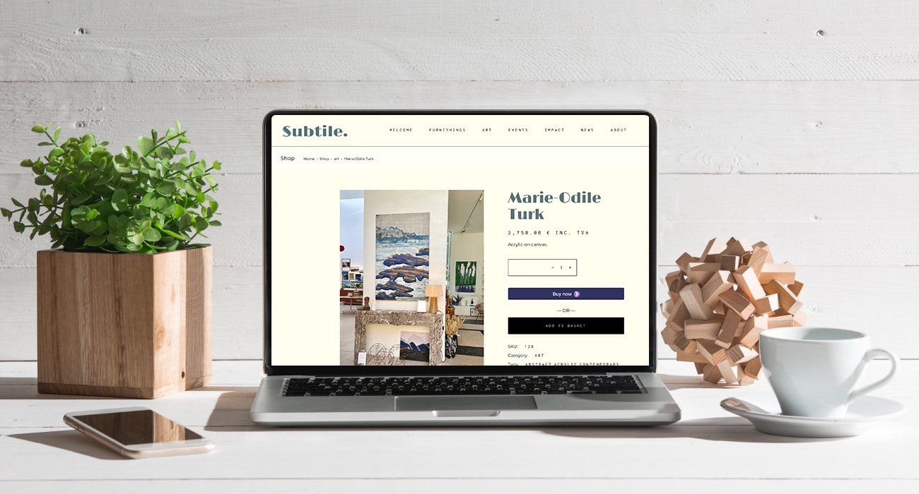 Subtile logo and website project